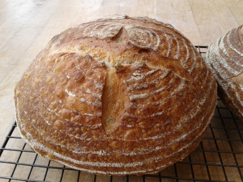 Kayla sourdough